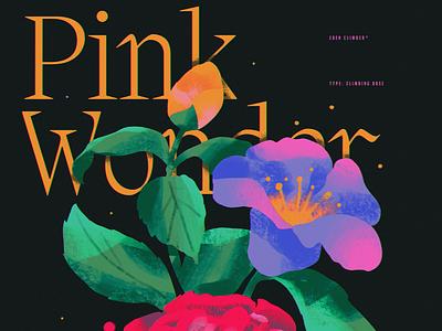 Pink Wonder design ipad pro texture abstract anime poster illustration