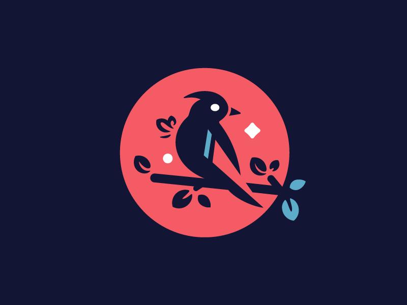 Bird Logo bird logo design albania company business art symbol moon web brand book design logotype identity star animal birds mark icon illustration brand branding