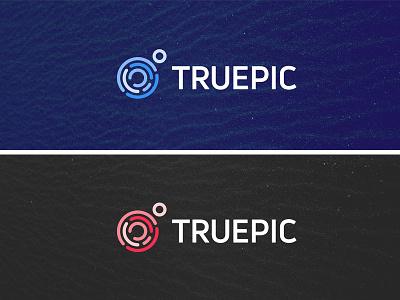 Colors security certify authentic fingerprint logo mark identity design brand identity logo