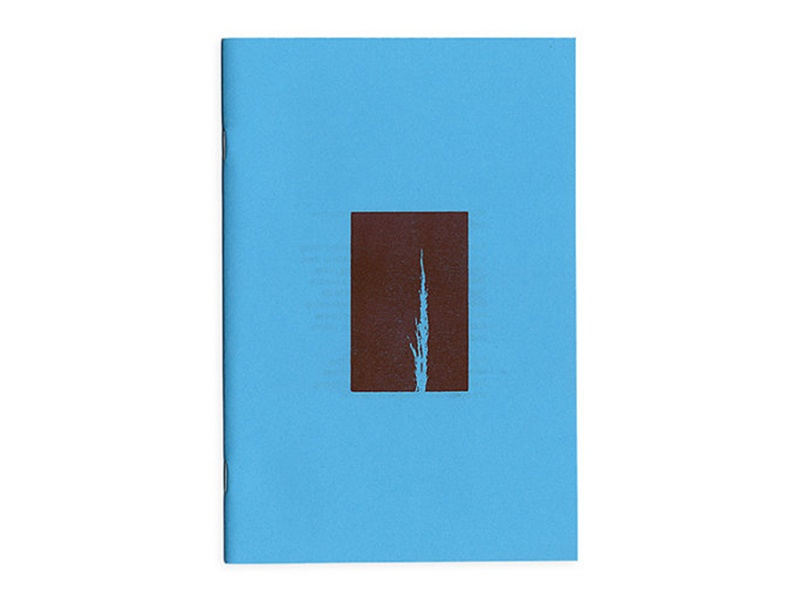 Monoghost - zine zine drawings book risk risograph red blue printmaking