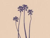 Four Palms Risograph Print