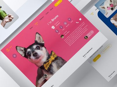 pet adoption website ui design landingpage visual design webdesign
