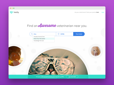 Vetify Landing Page 2.0 health pets vets marketing site landing page website