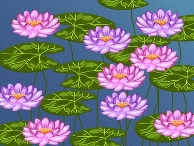 LILYPAD lily pad lily lilypads lilypad lotus artwork digital bloom lake flowers flower water digital illustration digitalart vector illustration