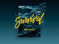 Survival - Wednesday