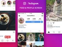 Instagram UI Free PSD
