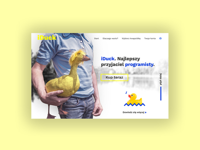 iDuck 1/3 - Hero uidesign ui ux web design webdesign