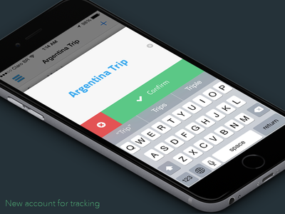 Easy Balance app - new accout input finance easy money balance flat iphone ux app ui ios