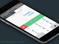 Easy Balance - new entry input finance easy money balance flat iphone ux app ui ios