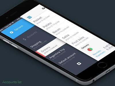 Easy Balance - Accounts input finance easy money balance flat iphone ux app ui ios