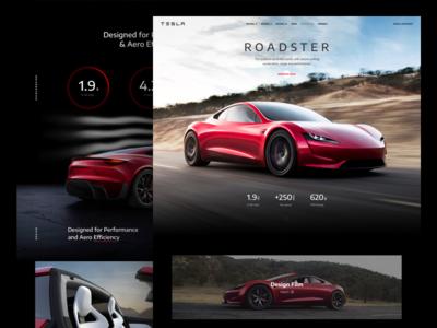 Concept: Tesla Roadster electric car speed landing flatstudio concept roadster tesla
