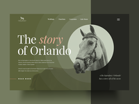 Here is the concept of Orlando project