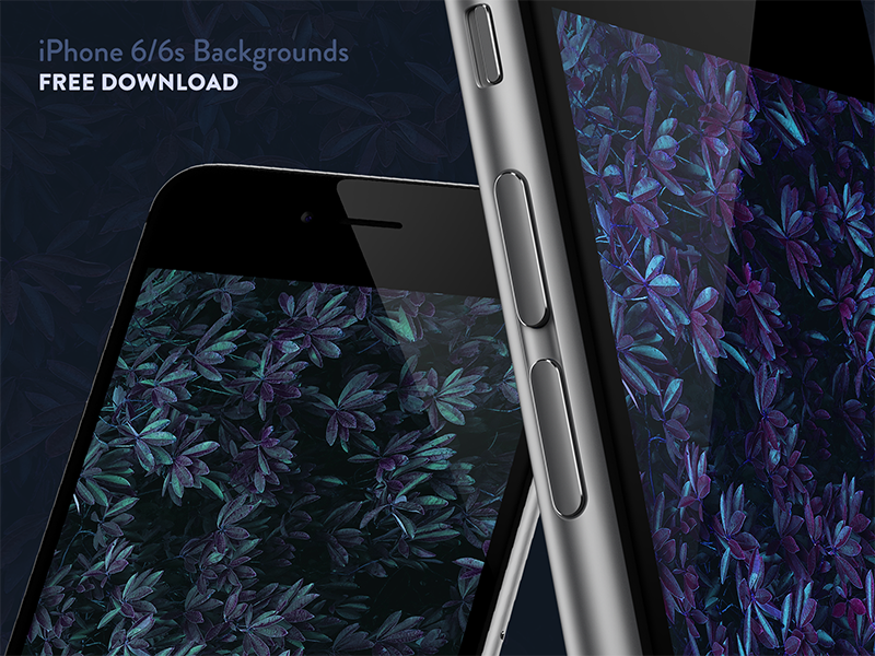iPhone 6/6s Backgrounds - Free Download download free wallpaper background 6s 6 iphone