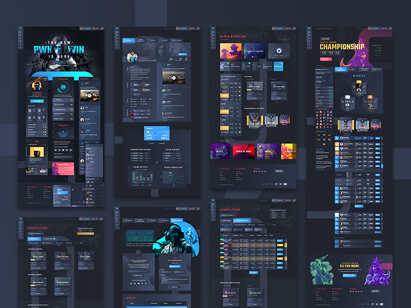 pwnwin - Overview interactive responsive userinterface ux interfacedesign ui webdesign
