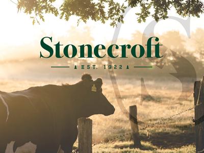 Stonecroft Logo identity logotype logomark style guide branding logo