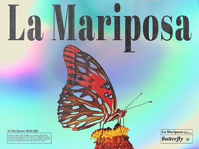 La Mariposa - Butterfly photoshop print design print modern minimal colorful abstract gradient digital art artwork graphic designer editorial design editorial graphic design poster typography vector design