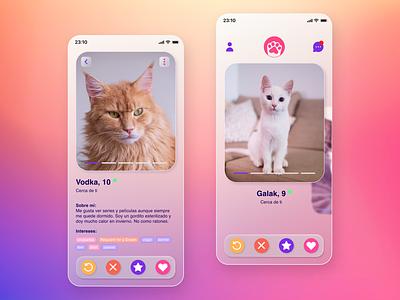 Cats figma pets glassmorphism mobile ui design dailyui app
