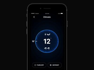 Car app: Climate Control