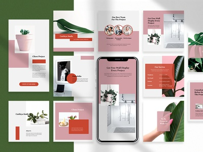 Cattleya - Instagram Post & Stories creative agency branding brand identity banner ads instagram stories instagram post instagram template agency branding