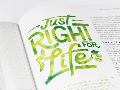 Editorial editorial lettering typography design illustration line swash monoweight leaves nature earth