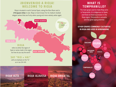 Rioja Wines 101 consumer alcohol data viz grapes campaign digital typography spain wine vineyard advertising branding infographic illustration