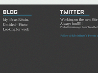 Blogging and tweeting