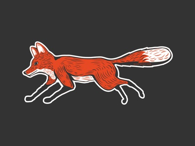 Roast Scout - fox illustration logo fox branding