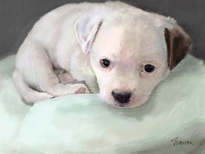 puppy illustration design puppy dog puppy