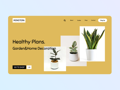 Flowers Shop yellow plants ux ui web flowers