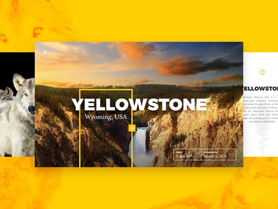 Yellowstone Park Cards