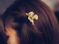Hairclip