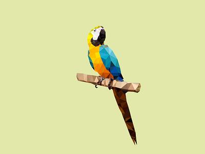 Low Poly Macaw illustration triangulation delaunay polygon low poly mark logo identity bird parrot macaw