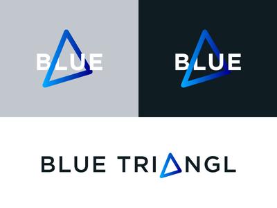 Blue Triangl Branding triangl triangle nordic blue identity icon logo branding
