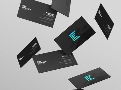 ExpConsult - Branding