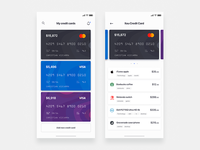 Credit card wallet - Daily UI Challenge 22/365