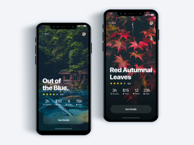 Custom tour discovery app - Daily UI Challenge 32/365