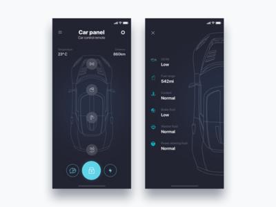 Remote car app Tesla  - Daily UI Challenge 34/365