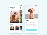 App for adopt dogs     daily ui challenge