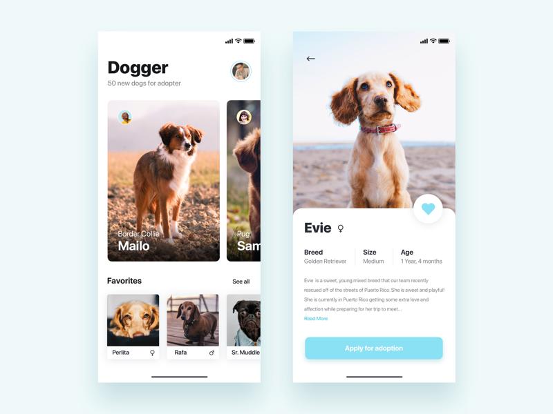 App for adopt dogs   - Daily UI Challenge iphonex animal adopt dog app design app ux ui ux design user experience interaction design