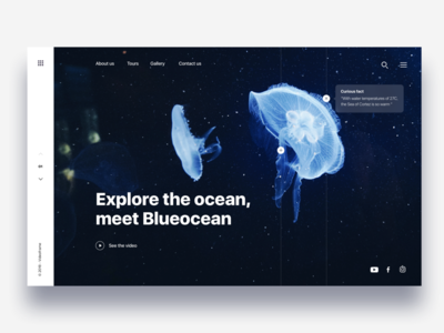 Landing page diving in ocean - Daily UI Challenge