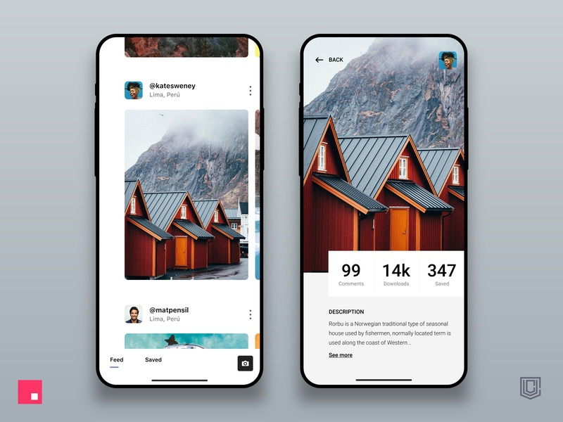 Photography Social App details page social app photography app clean design app cards invisionstudio invision color grids ios interface ui design design app ux design user interface interaction design user experience ux ui