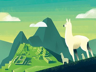 Peru green ipad color dts down the street procreate lighting perspective llama machu picchu illustration coffee