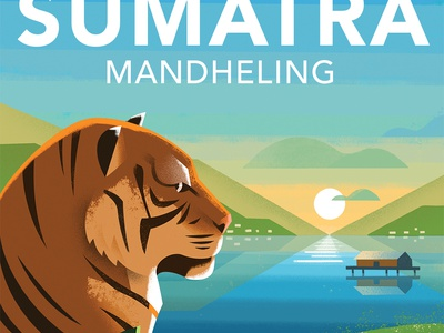 Sumatra Mandheling packaging down the street designs ipad color dts illustration coffee tiger perspective lighting procreate down the street