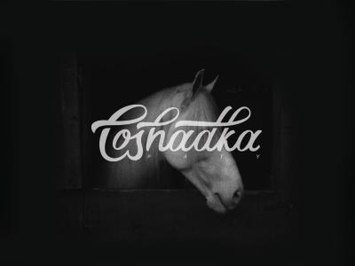 Loshadka p r t y  lettering logotype type font print design artist horse loshadka