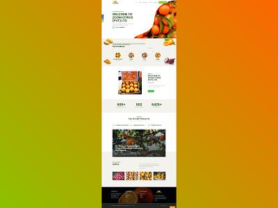 Zoom Citrus Website web design web development website design ui  ux