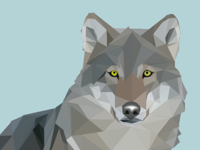 Wolf polygons