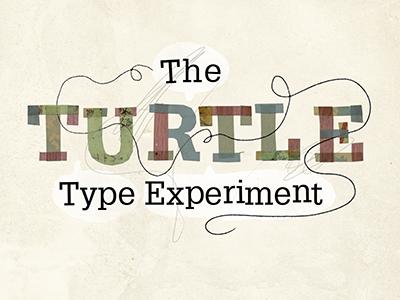 Typeexpirement1