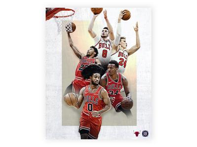 Chicago Bulls Graphic