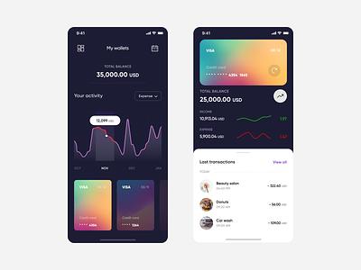 Banking app expense income visa wallet creditcard transaction balance banking bank app radesign gradient app serbian designer montenegro croatia balkan ui design apple