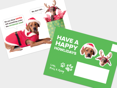 Holiday Post Cards dogs green post card holiday